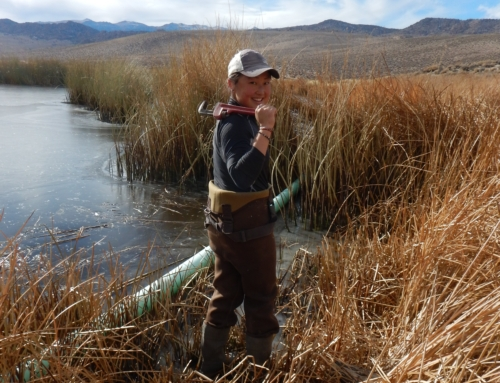 Getting My Feet Wet: Looking Back on my AmeriCorps Term with ESLT