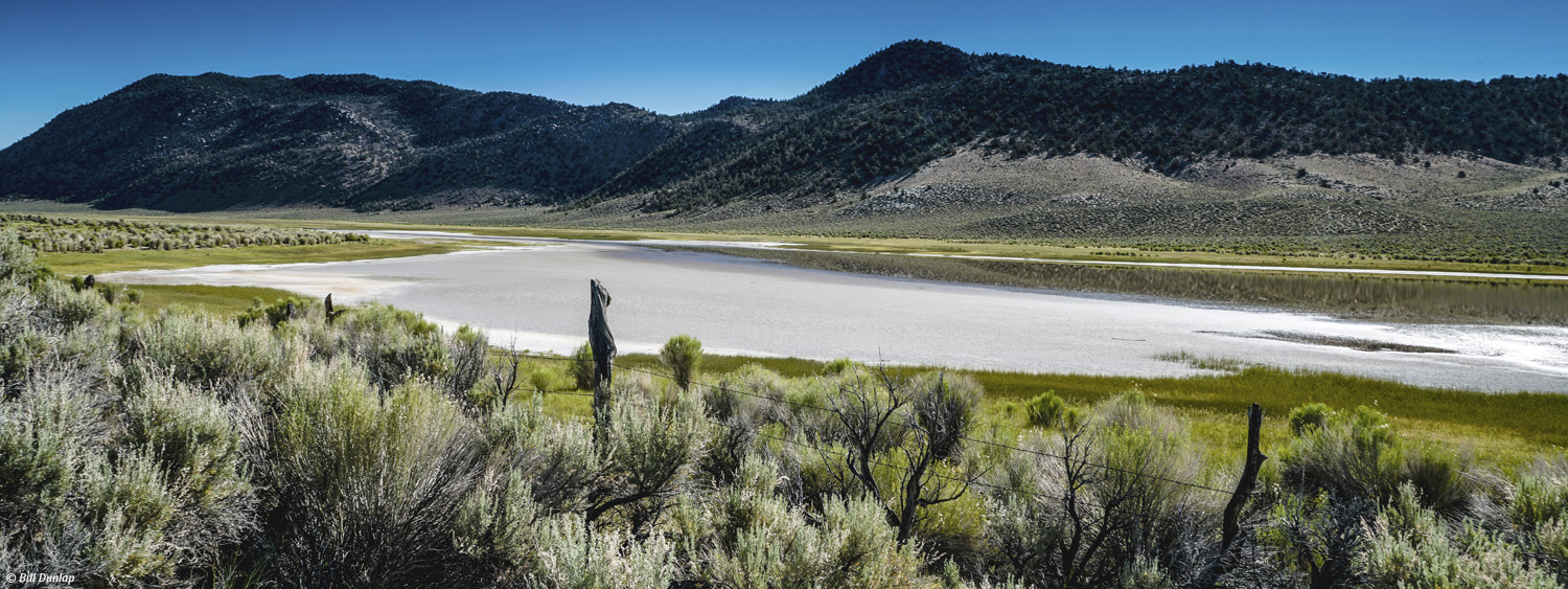 Black Lake Preserve in the Eastern Sierra (photo by Bill Dunlap)