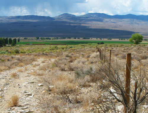Cinnamon Ranch Conservation Easement