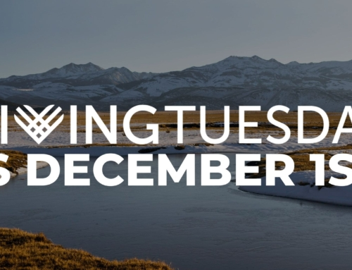 Creative Ways to Give on #GivingTuesday