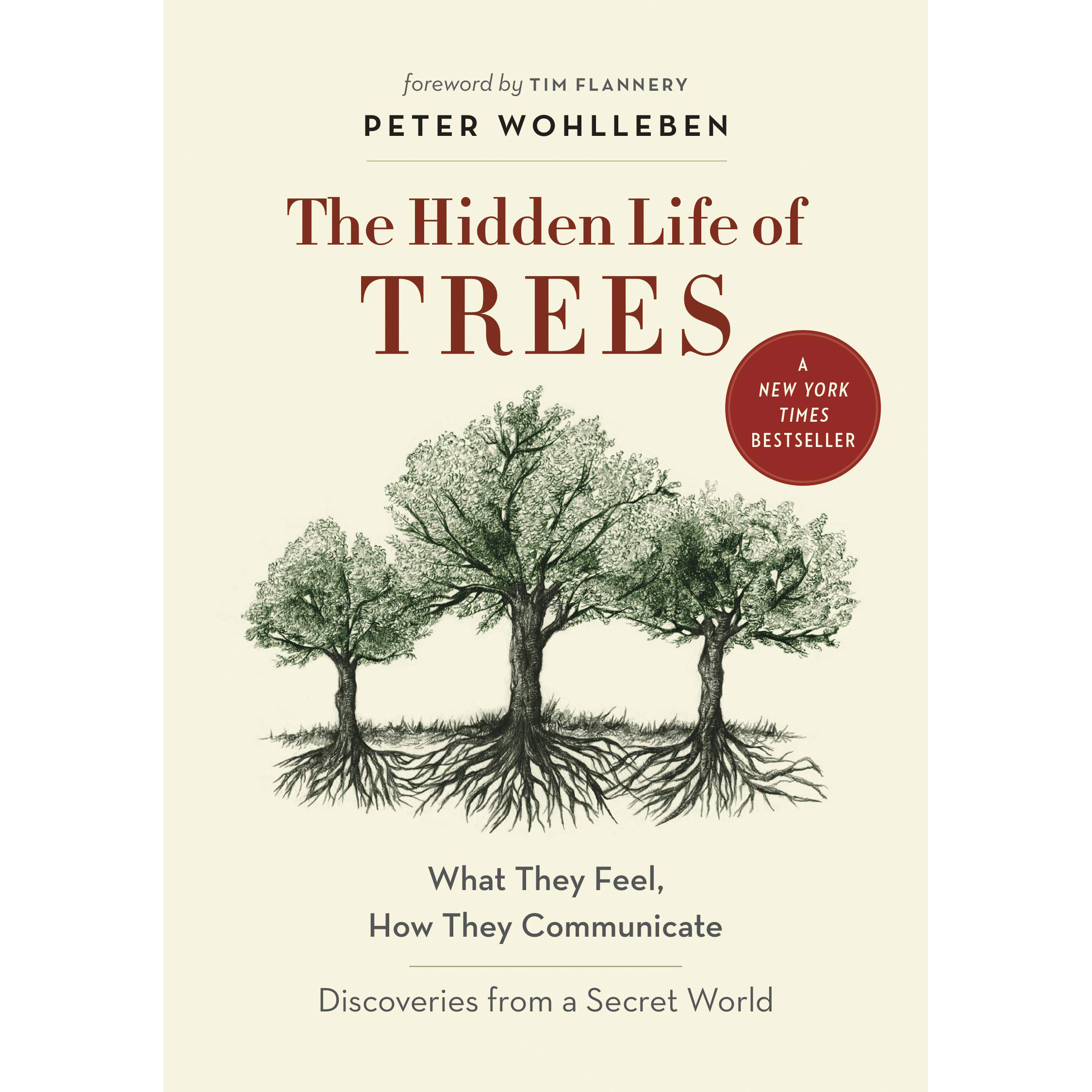 Book Club: The Hidden Life of Trees