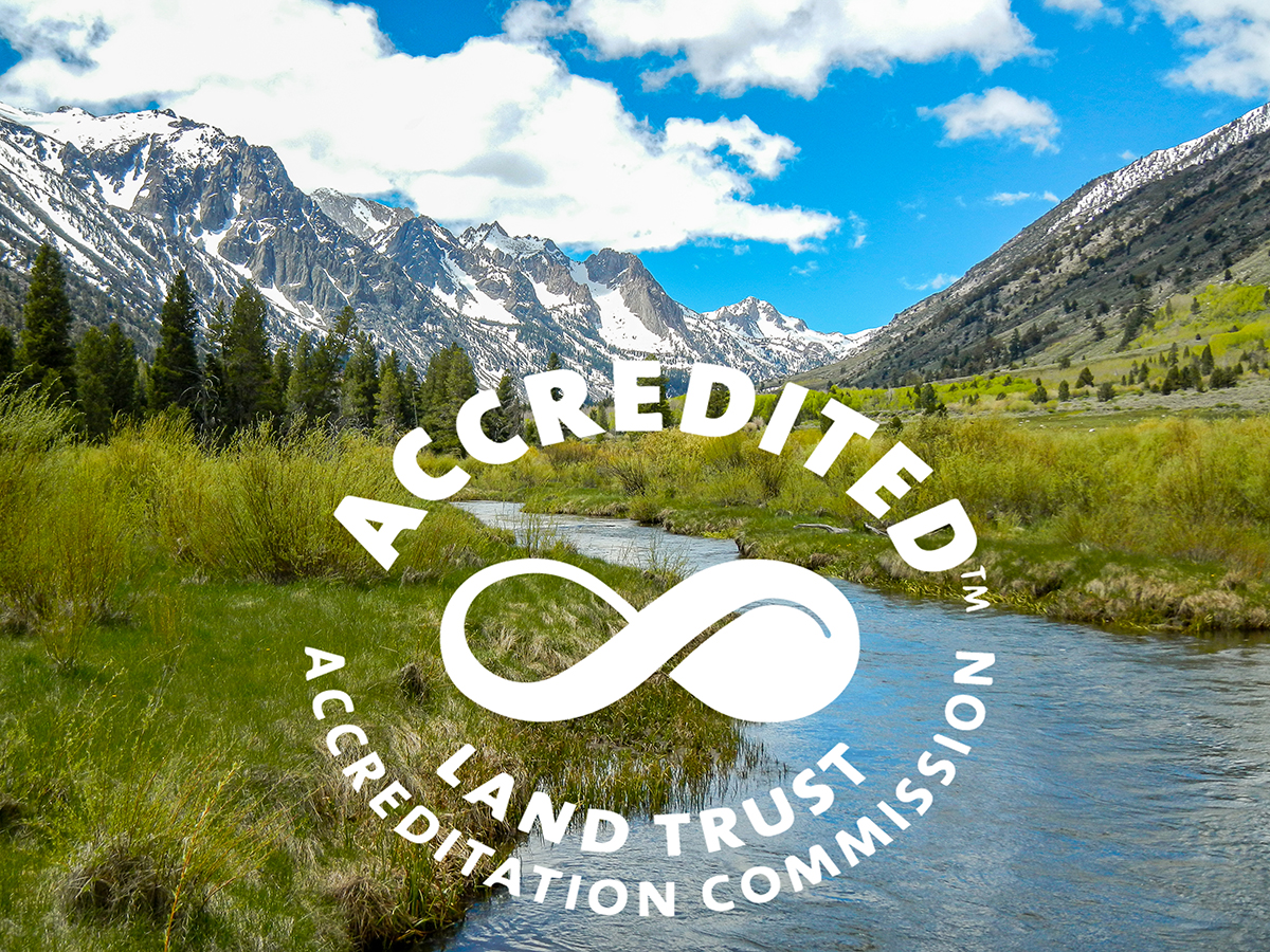 ESLT's Renewal of LTA Accreditation Stakeholder Notification and Public Notice